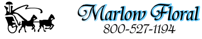Marlow Floral Coastal Decor From $4.75