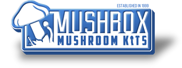 Mushbox Promo Code