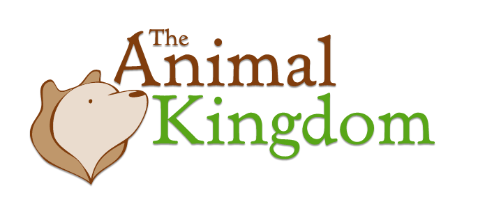 The Animal Kingdom Green Toys From $8.99